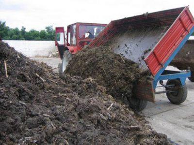 Colectare Deșeuri Biomasă